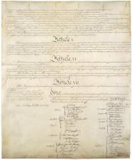 democracia constitucionalidad