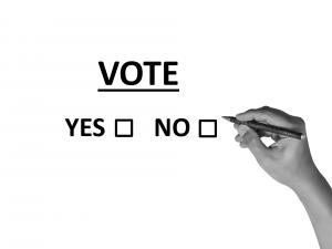 democracia referéndum