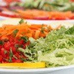 ¿Qué es dieta vegetariana?