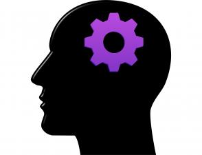 psicología estructuralismo