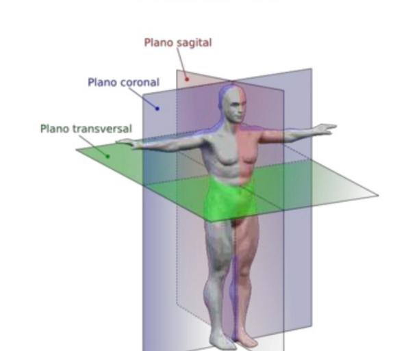 Qué es planimetría? Definición, concepto y significado.