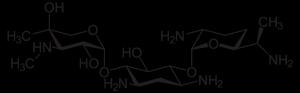 gentamicina-300x93.png