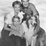 ¿Qué es ser más bueno que Lassie?