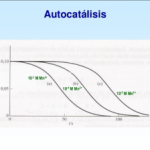 ¿Qué es autocatalítico?