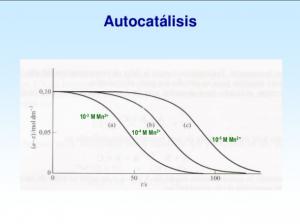 autocatálisis-300x224.png