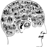 frenológico-298x300.png